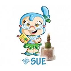 Sue - Crescita